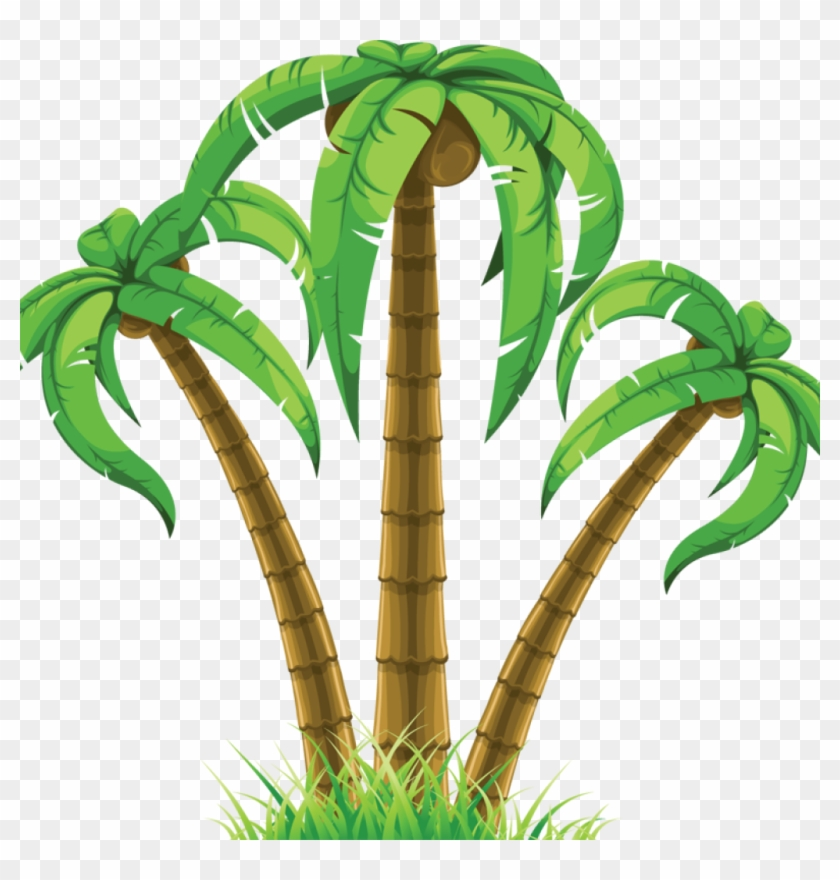 Palm Tree Clip Art Free Group Of Three Palm Trees 863786 - Palm Tree Clip Art Free Group Of Three Palm Trees 863786 #148