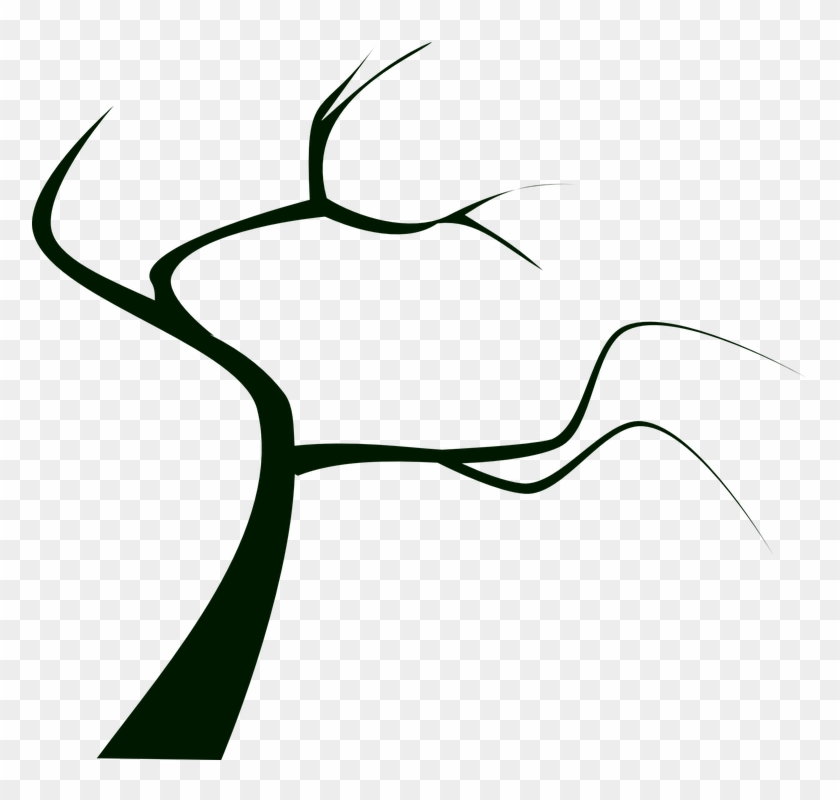 Tree Plant Dead Tree Silhouette Branch Bare - Tree Plant Dead Tree Silhouette Branch Bare #1421