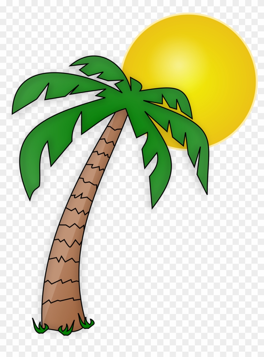 See Here New 2018 Free Pictures Download Palm Tree - See Here New 2018 Free Pictures Download Palm Tree #173