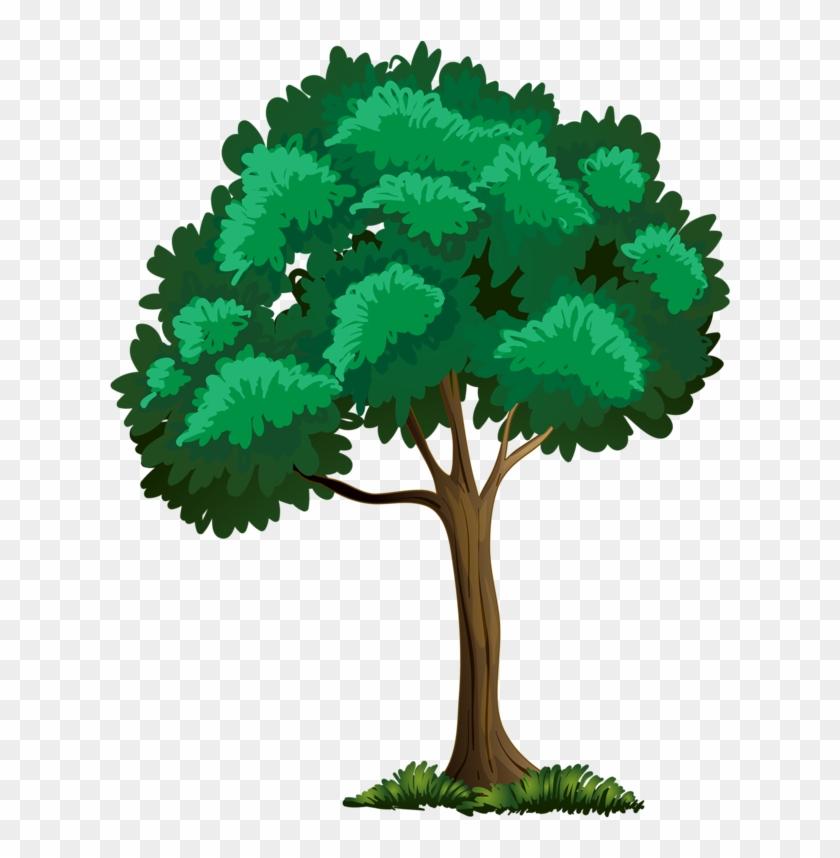 Trees ‿✿⁀°••○ - Arbre Clipart Png #1699