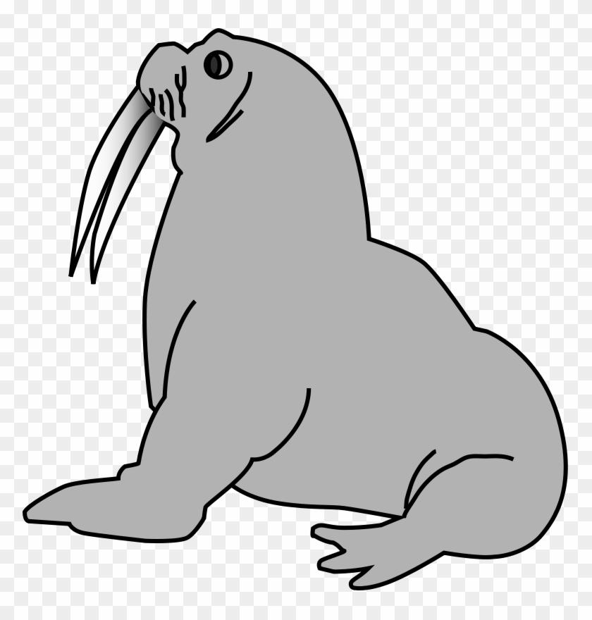 Australian Animals Clipart Free Download Clip Art - Seal Clip Art #1739