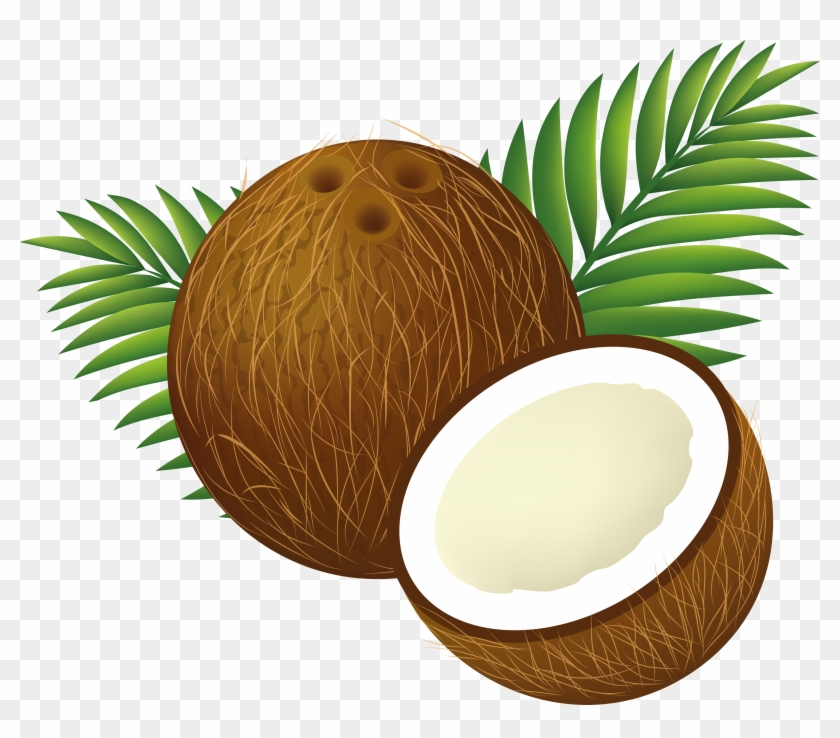 Tropical Coconut Drink Clipart - Tropical Coconut Drink Clipart #1819