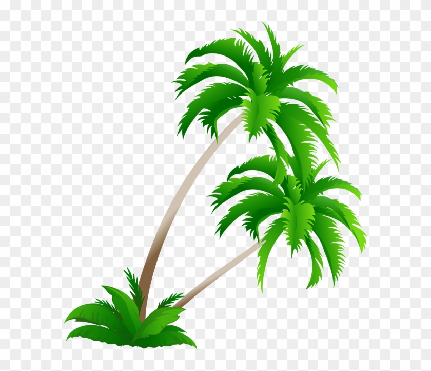 Arecaceae Coconut Tree Clip Art - Arecaceae Coconut Tree Clip Art #1846