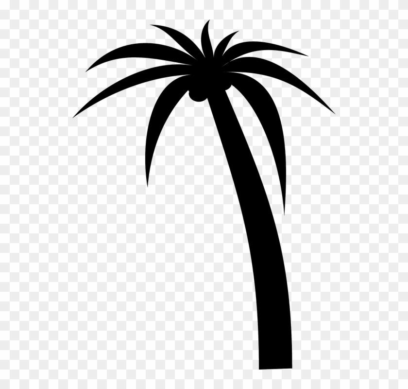 Tree Palm Silhouette Tropical Black Coconut Plant - Palm Tree Clip Art #1873