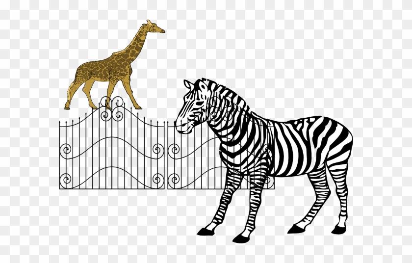 Zoo Animals Clip Art - Zebra Drawing Black And White #1879