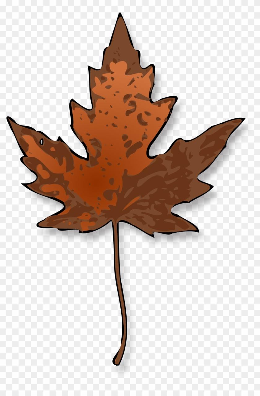 Maple Leaf Clip Art #1999