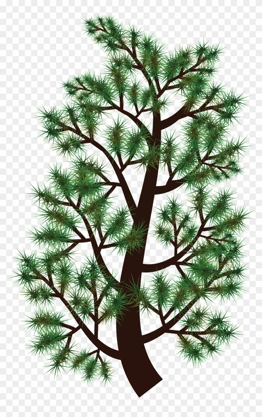Free Clipart Of A Pine Tree Branch - Free Clipart Of A Pine Tree Branch #228