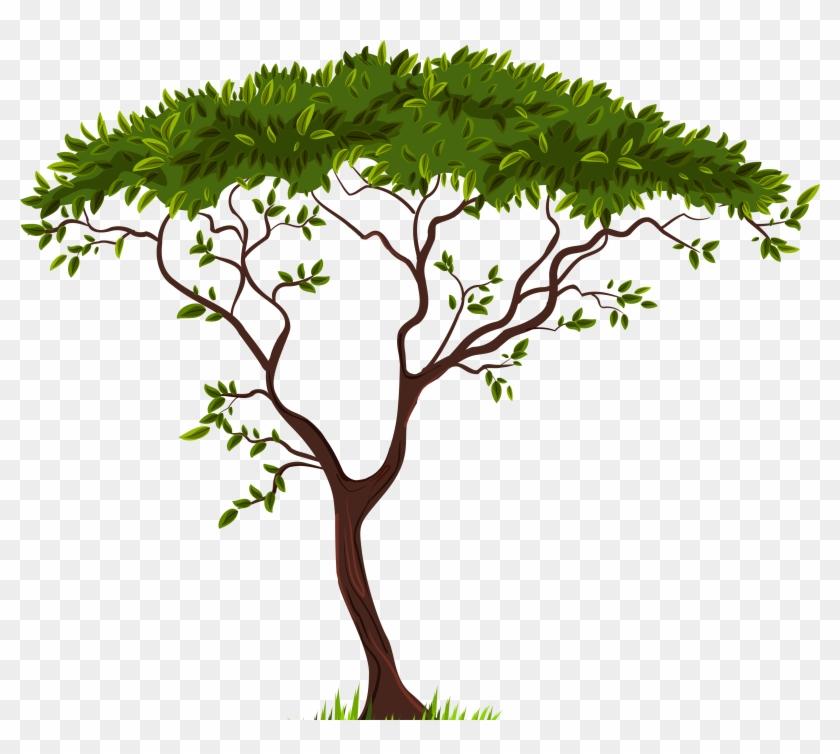 Exotic Tree Png Clip Art - Exotic Tree Png Clip Art #227
