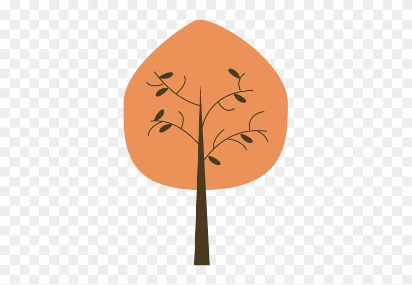 Orange Tree - Orange Tree #24