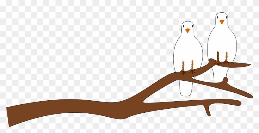 Branch Clip Art - Branch Clip Art #225