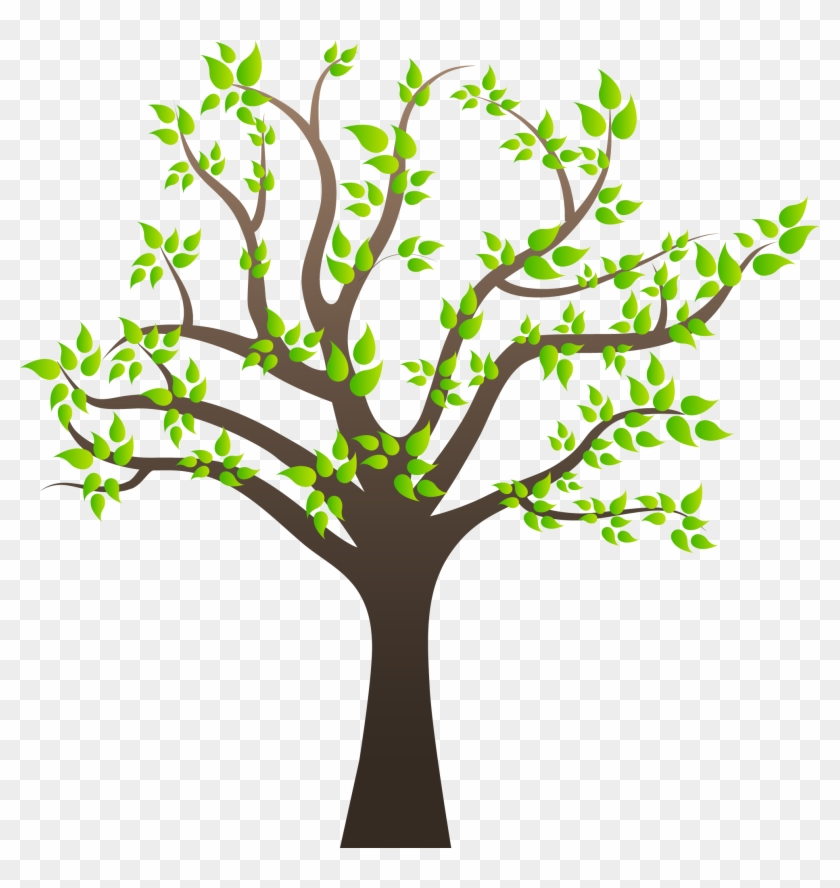 Tree Clipart Png Image 01 - Photosynthesis In A Tree #2376