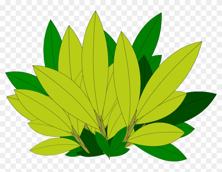 Clipart Tree Leaf Foliage Leaves Pencil And In Color - Tree #2411