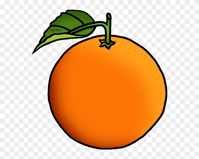 Orange Clipart - Orange Clipart #2423