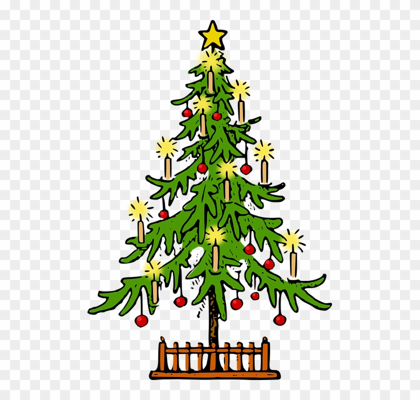 Fir Tree Clipart Conifer - Christmas Tree #2418