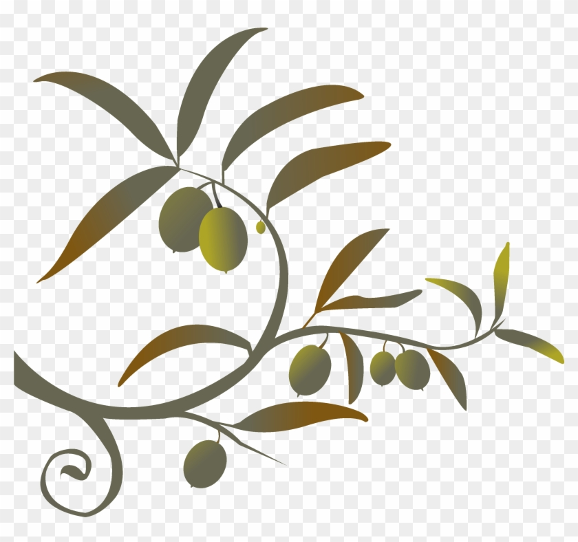 Olive Branch - Olive Branch #254