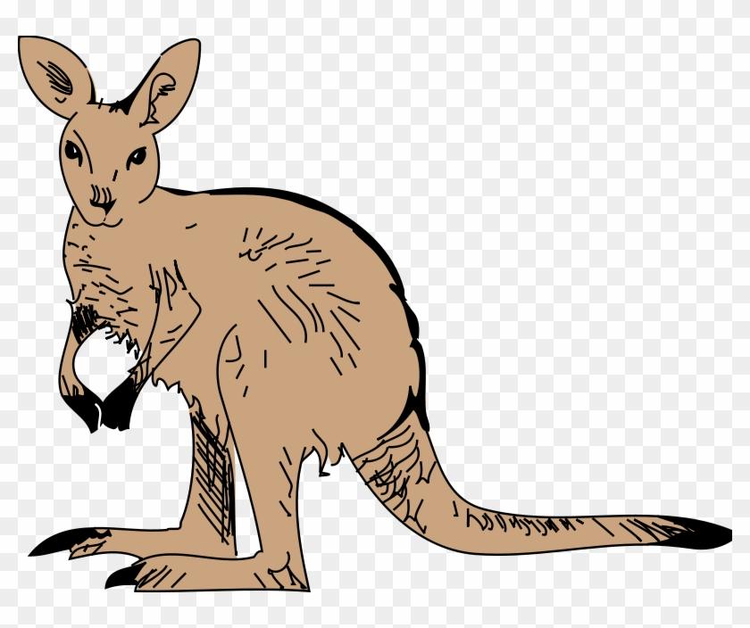 Cute Furry Kangaroo Clip Art - Animated Kangaroo Png #2661