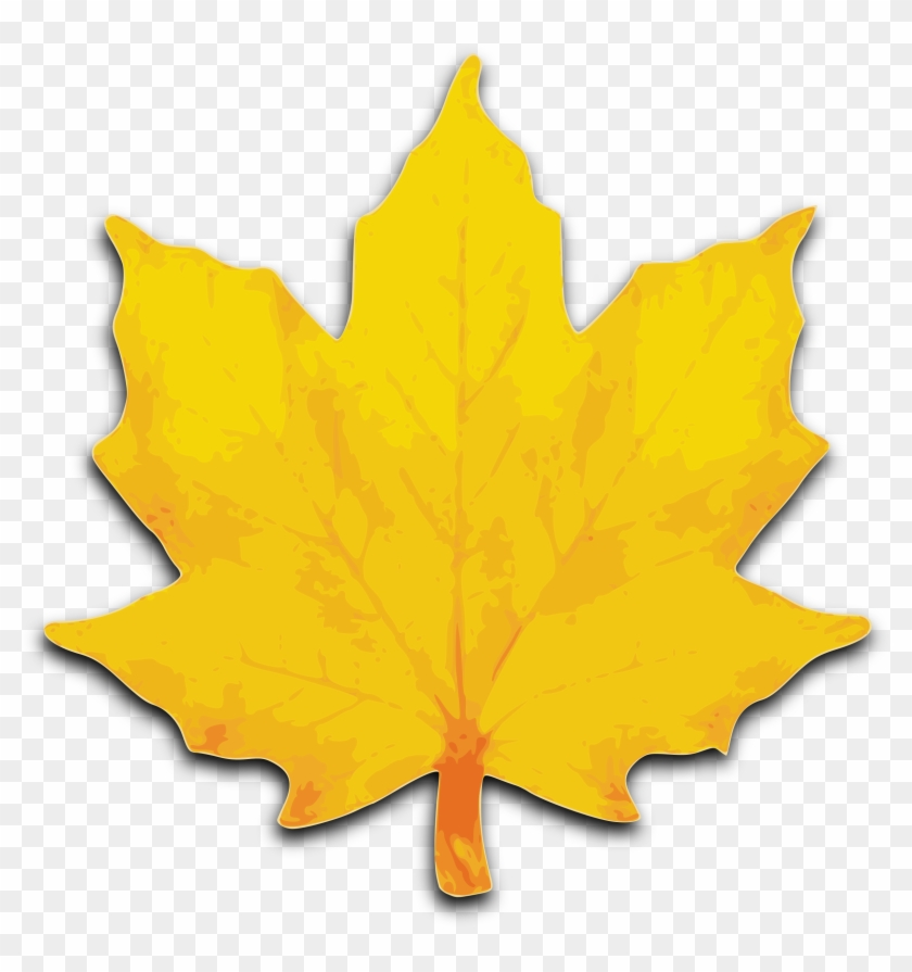 Leaf Clip Art - Maple Leaf Clip Art #2787