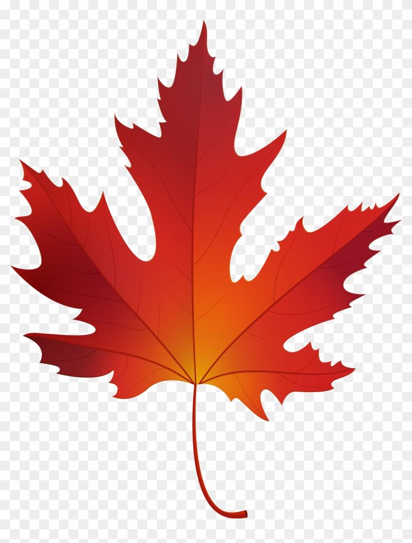 Autumn Maple Leaf Png Clip Art - Autumn Maple Leaf Png Clip Art #2856