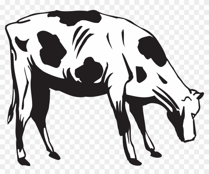 Grass Black And White Black Cow Eating Grass Clipart - Cow Eating Clip Art #2855
