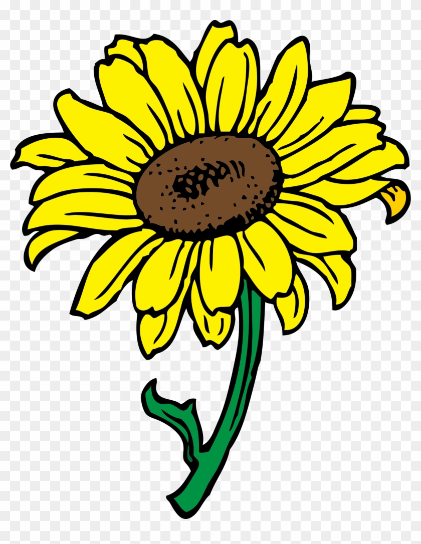 Sunflower - Sunflower Clipart Transparent Background #2912