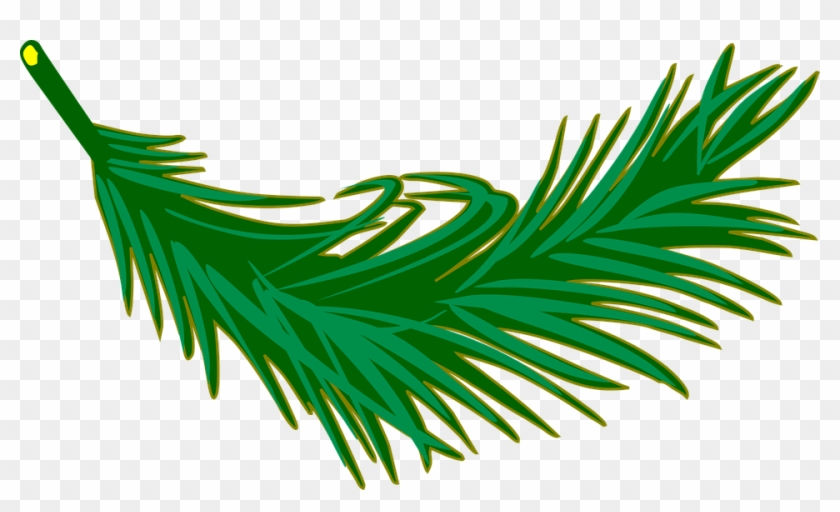 Branch Frond Leaf Leafy Leaves Palm Plant - Palm Leaf Clip Art #2984