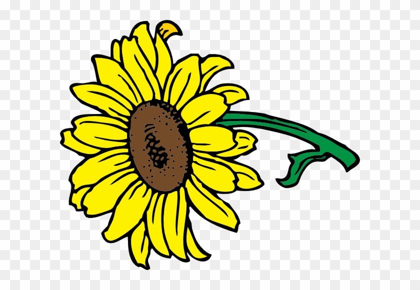 Sunflower Clip Art #3061