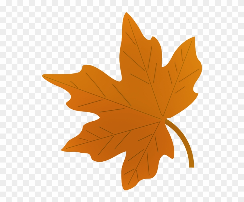 Green Fall Leaf Drawing Draw A Autumn Leaf Free Transparent Png Clipart Images Download