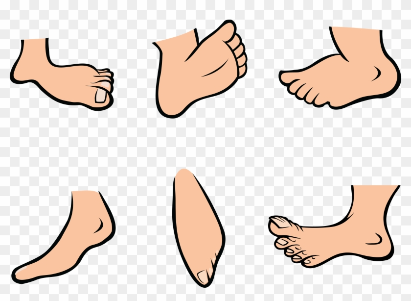 Bunny Feet Clipart Elegant Free Animataed Collection - Foot Cartoon Png #3224
