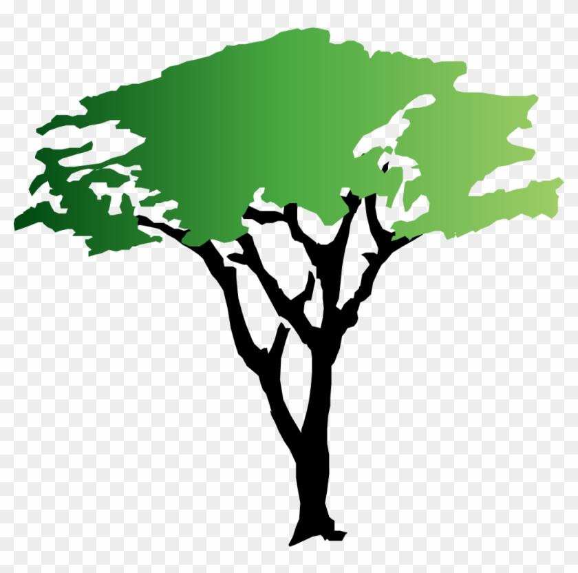 Green Tree Clipart - Acacia Tree Clipart #3273