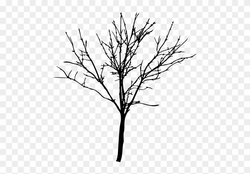 Free Png Simple Bare Tree Silhouette Png Images Transparent - Free Png Simple Bare Tree Silhouette Png Images Transparent #321
