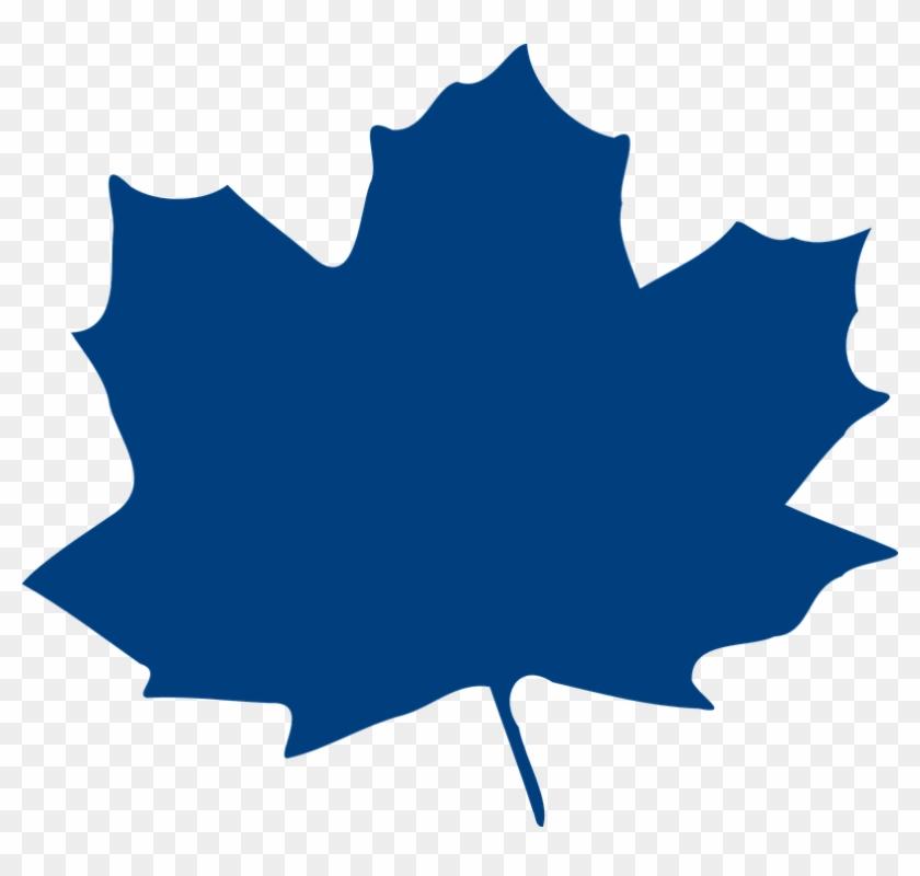 Maple Leaf Clipart Blue - Daun Maple #3391
