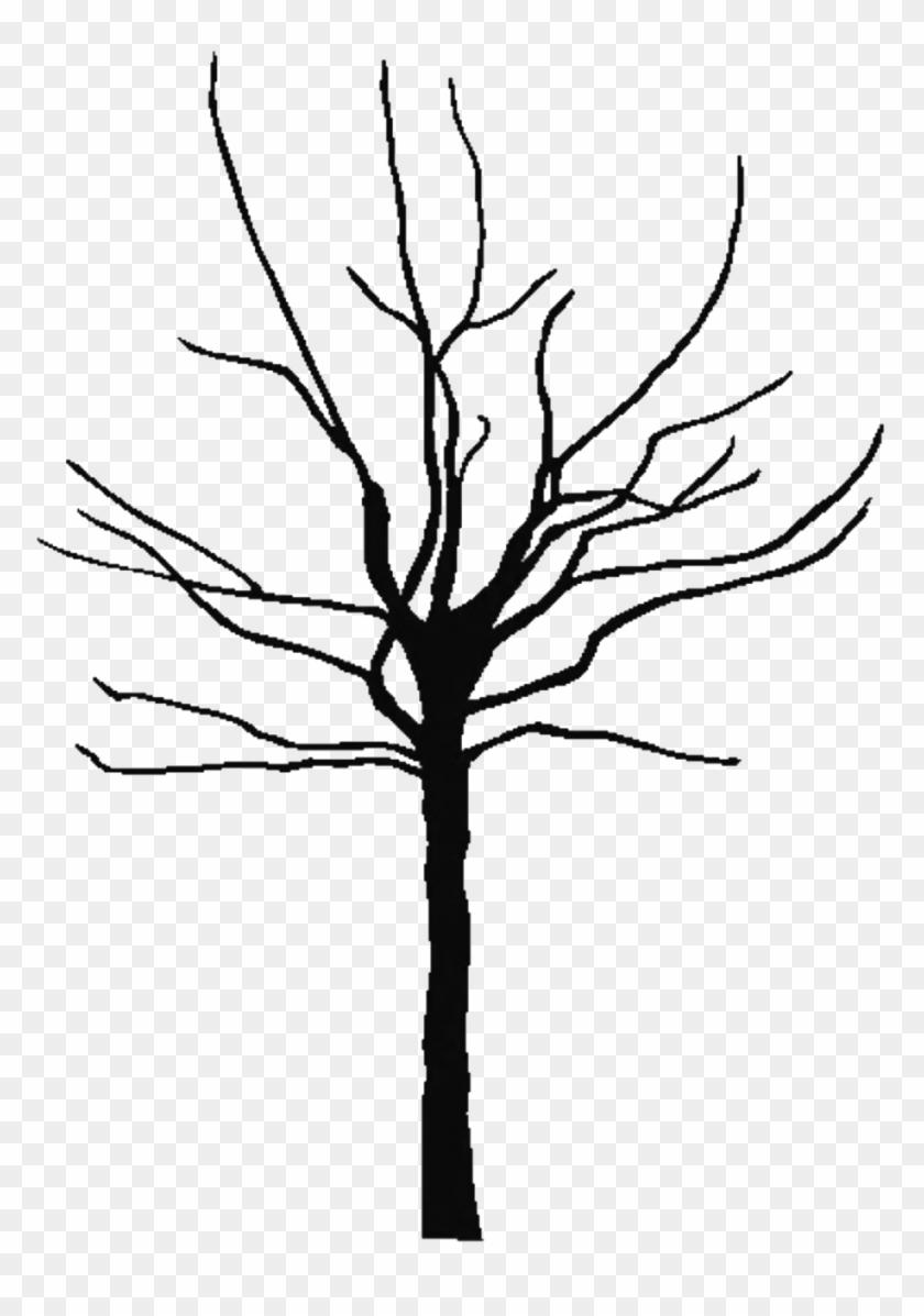 Clip Art Family Tree Outline - Clip Art Family Tree Outline #342