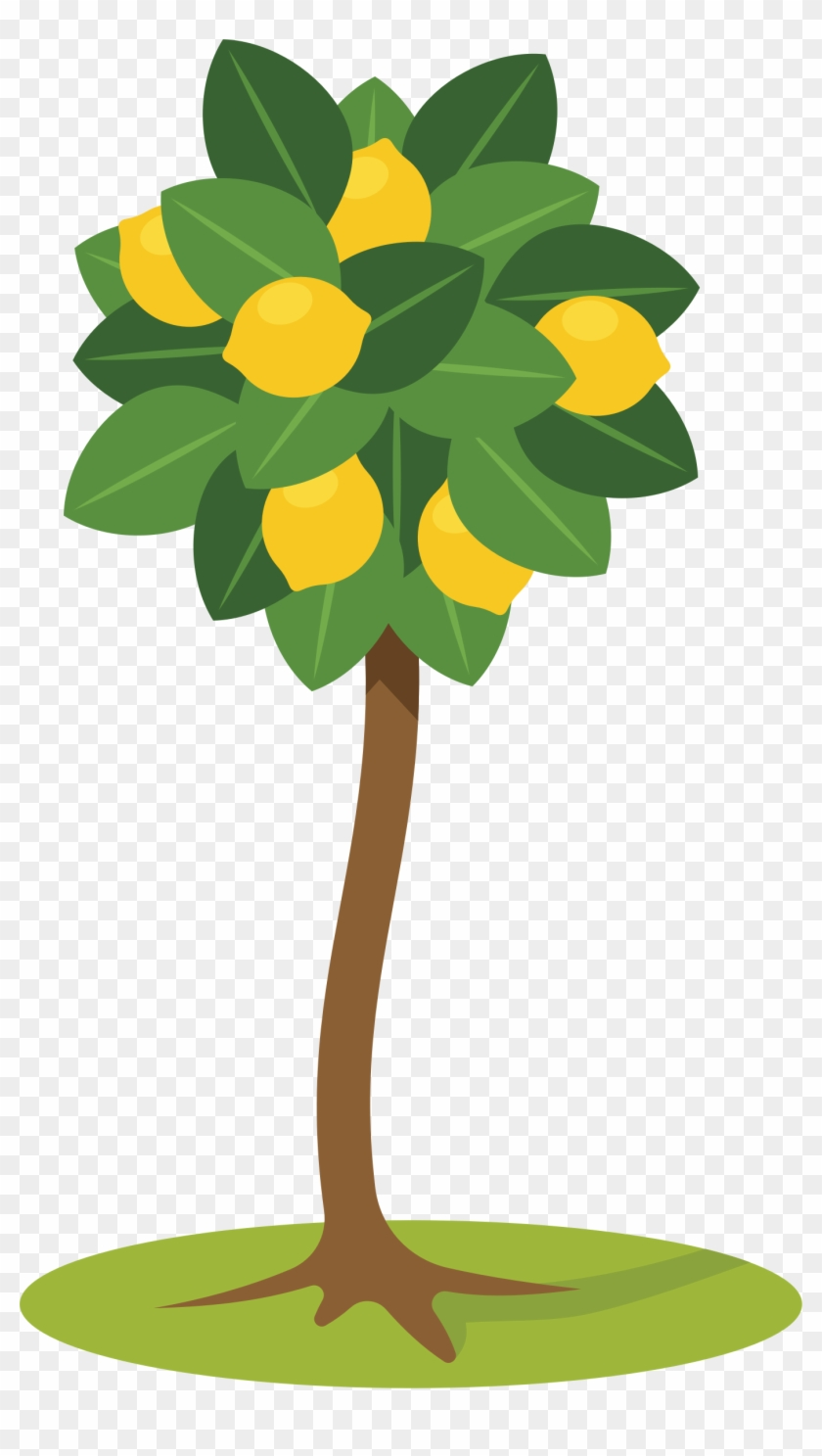 Lemon Tree Clipart - Lemon Tree Clipart #350