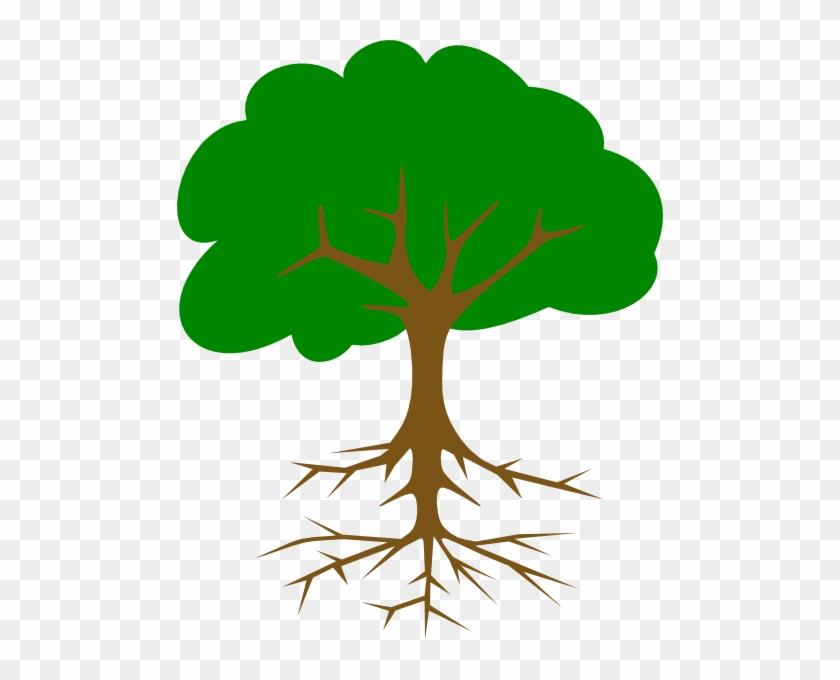 Big Tree Clipart Clip Art At Clker Com Vector Online - Tree Clip Art #3509
