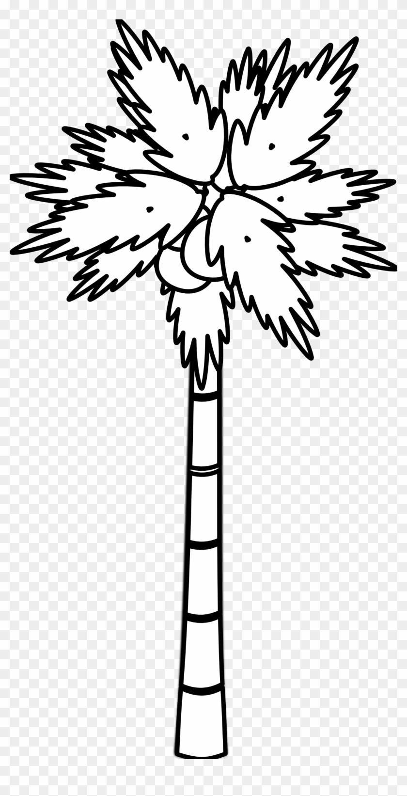 Palm Tree Clip Art Black And White - Palm Tree Clip Art Black And White #348