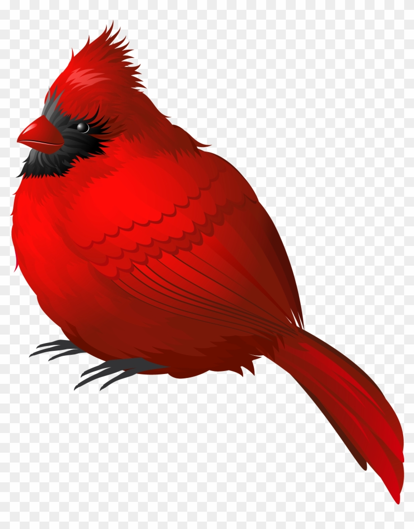 Red Winter Bird Png Clipart Image - Red Bird Png #3610
