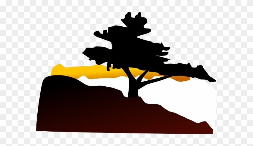 Bonsai Tree Clip Art #3639