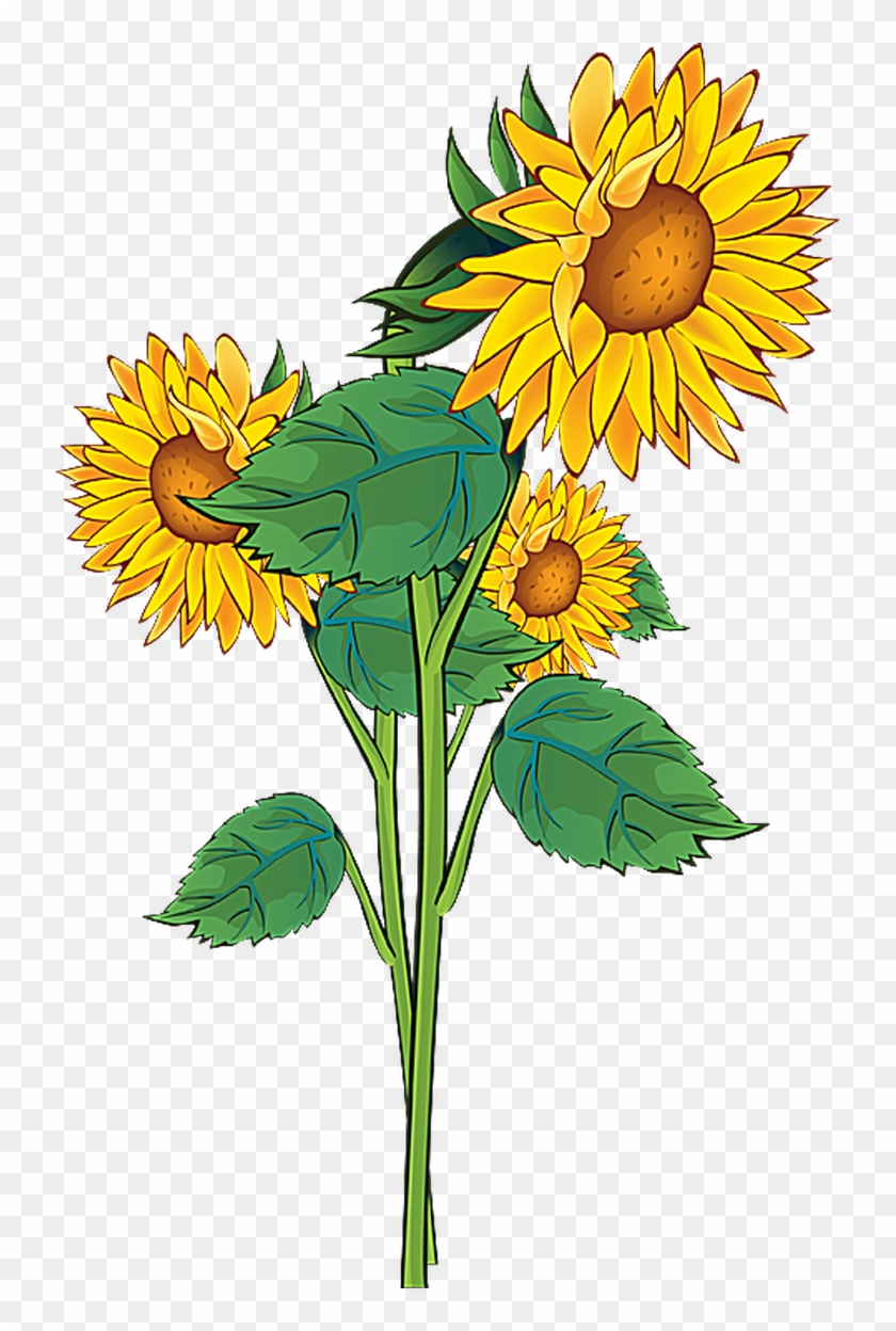 Grab This Free Summer Flower Clip Art - Sunflower Clipart #3637