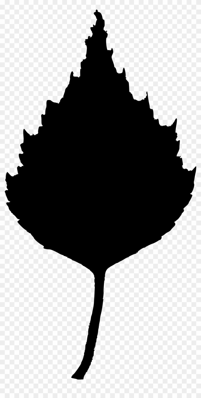Maple Leaf Clipart - Birch Leaf Clip Art #3857