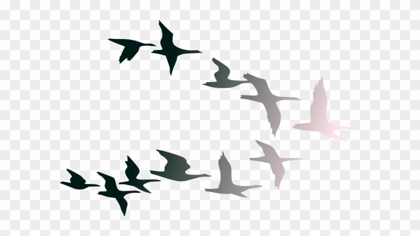 Bird Clipart Bird Fly - Clip Art #3975