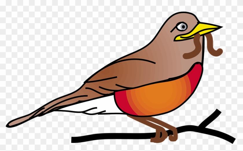 Red, Robin - - Free Clip Art Robin #4048