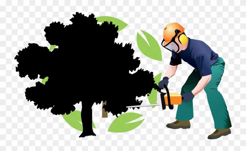 Houston Texas Tree Care - Houston Texas Tree Care #410