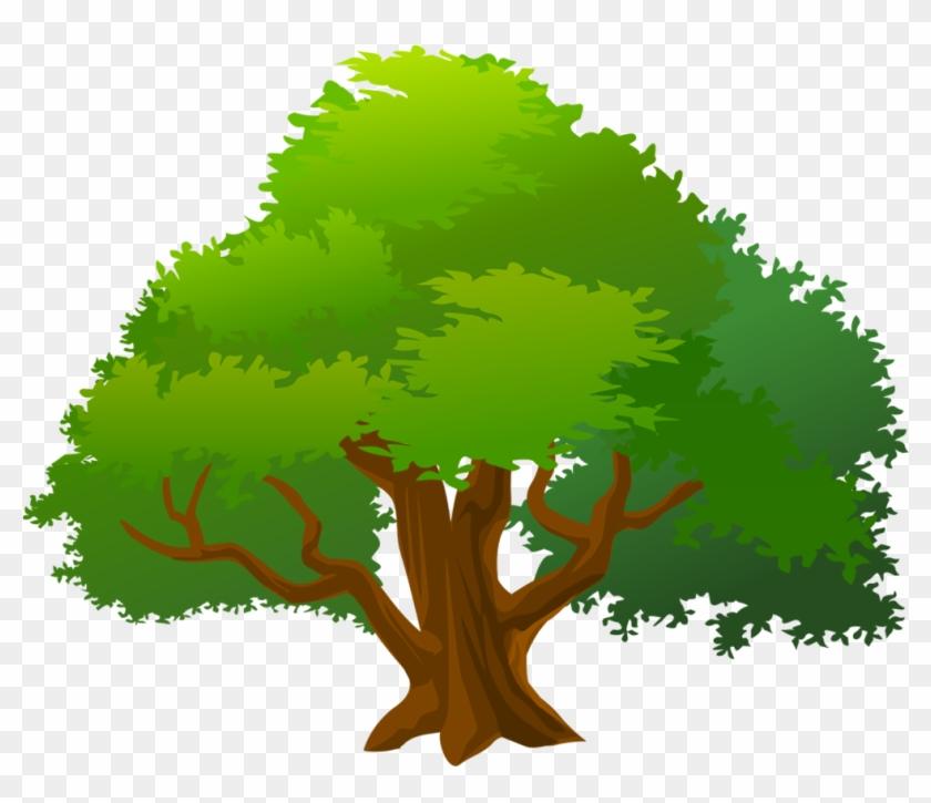 Mango Tree Clipart - Mango Tree Clipart #440