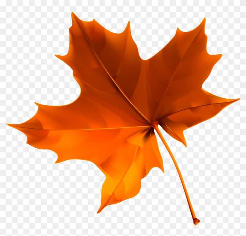Leaf Autumn Clip Art - Leaf Autumn Clip Art #4165