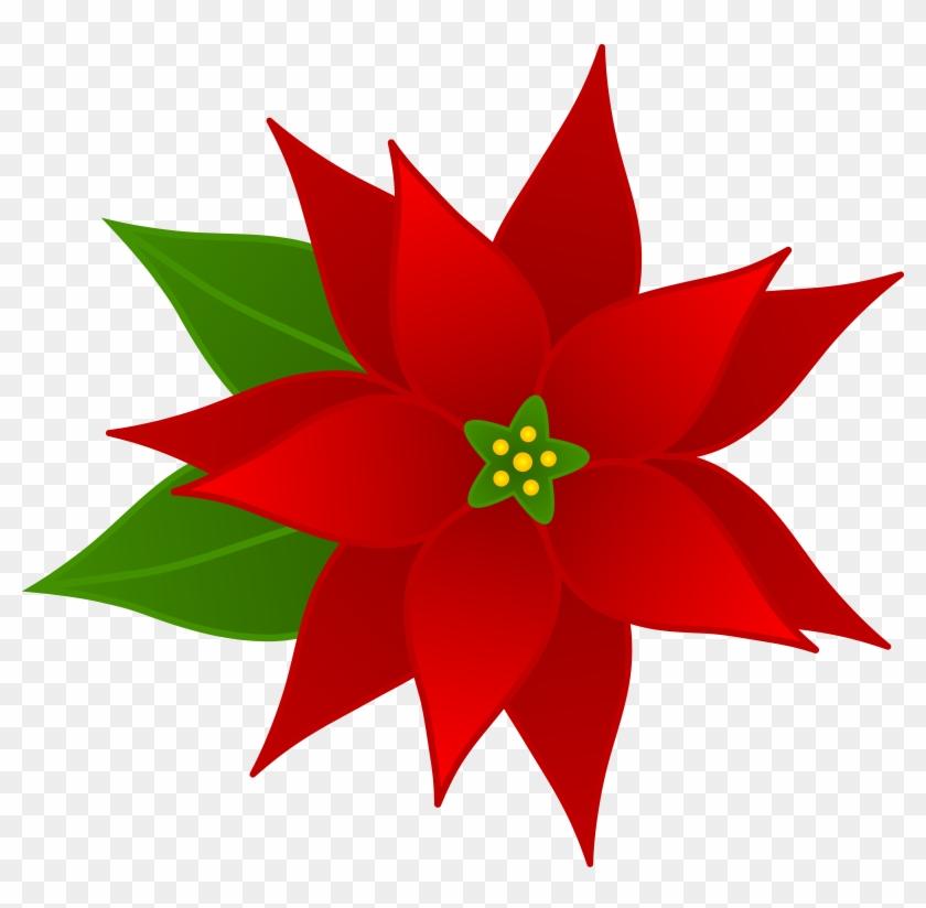 Christmas Clipart Free - Poinsettia Clipart #4264