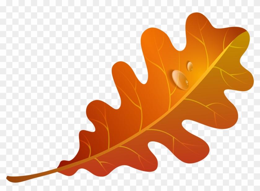Clip Art Orange Leaf #4308