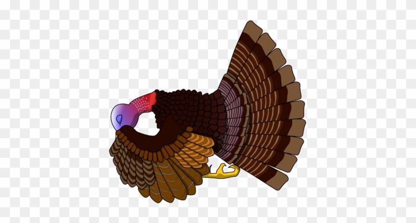 Praying Turkey - Praying Turkey Cartoon #4367