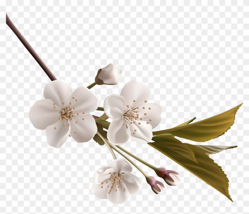 White Flower Clip Art - White Flower Clip Art #527