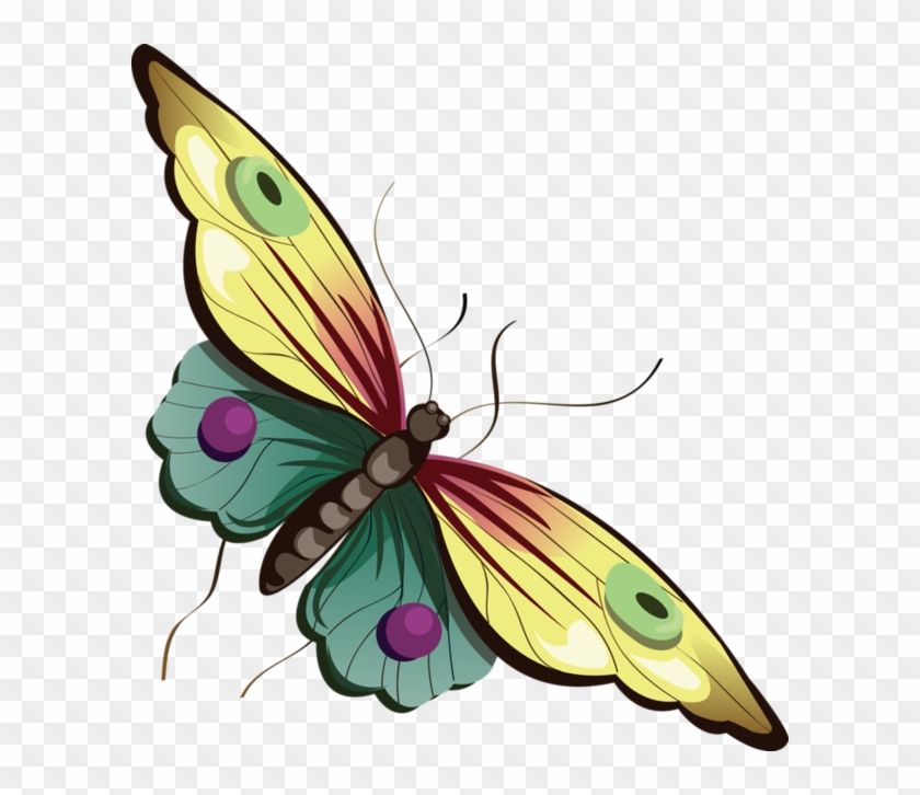 Butterfly - Clipart Best - Butterfly Png Transparent Cartoon #4447
