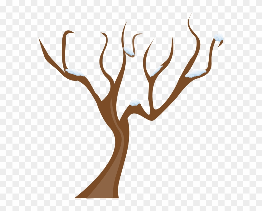 Without Leaves Clipart Clipground - Tree Without Leaves Clipart #4532